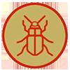 owadoznawca.png